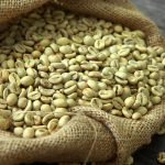 Organic Gourmet Coffee